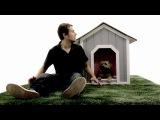 Doggie Heaven (Собачий рай) джеймс ван режесер